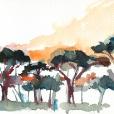 110625_aqumedici_jardin_02
