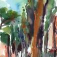 110624_aqumedici_jardin_01