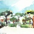110625_aqumedici_jardin_03
